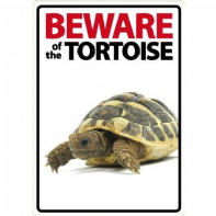 Beware Of The Tortoise Sign
